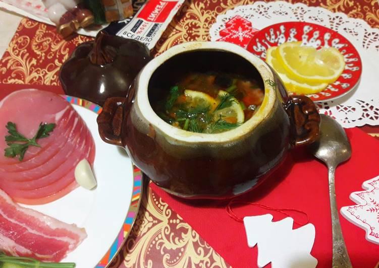Мясная солянка в горшочке с деликатесами Ремит