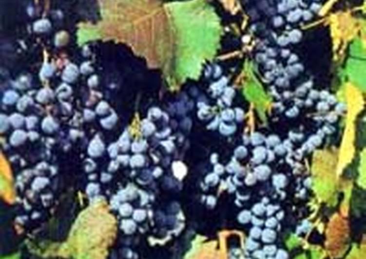 Компот виноградный