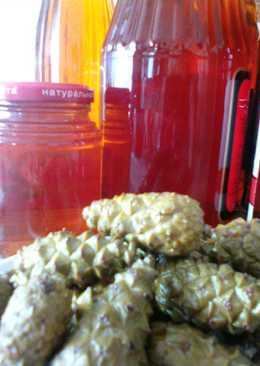 Целебный сироп из сосновых шишек