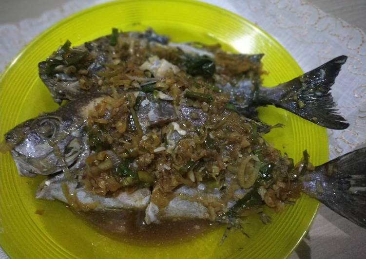 Tim Ikan Baronang