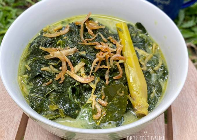 Opor Teri Daun Singkong (tidak pedas cocok untuk menu sayuran anak2)