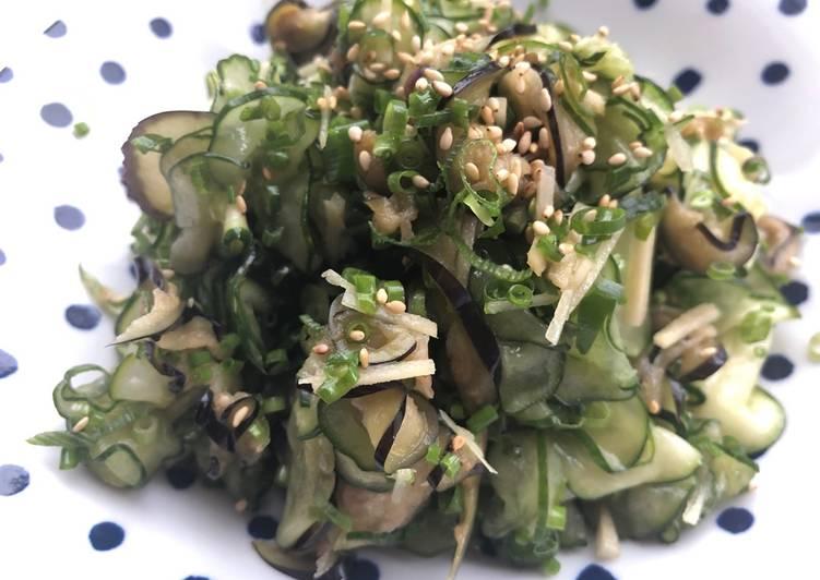 Zucchini Eggplant Cucumber Salad