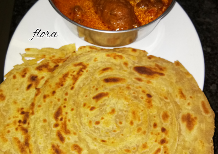 (Bottle gourd) Lauki kofta with lachha paratha, Exactly Why Are Apples So Fantastic For Your Health