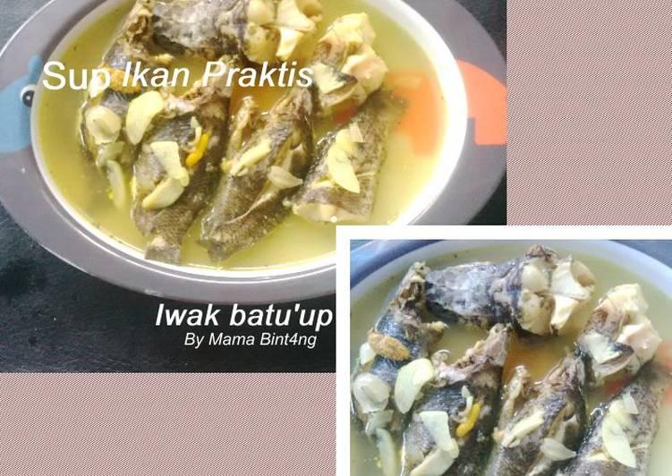 Sup Ikan Praktis