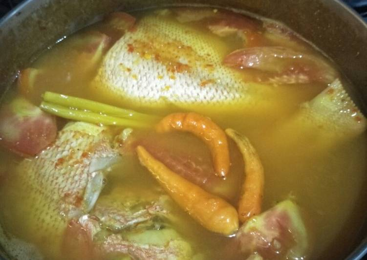 Ikan Kakap Merah lempah kuning