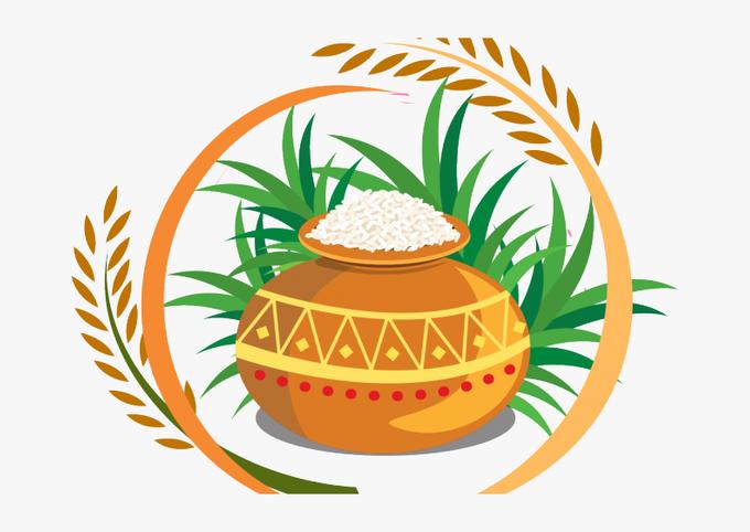 Dollar Store Spanish Rice