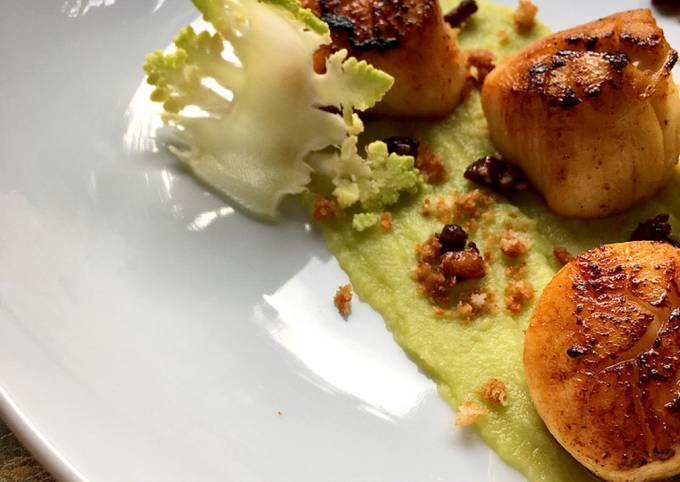 Pan seared scallops and roe emulsion