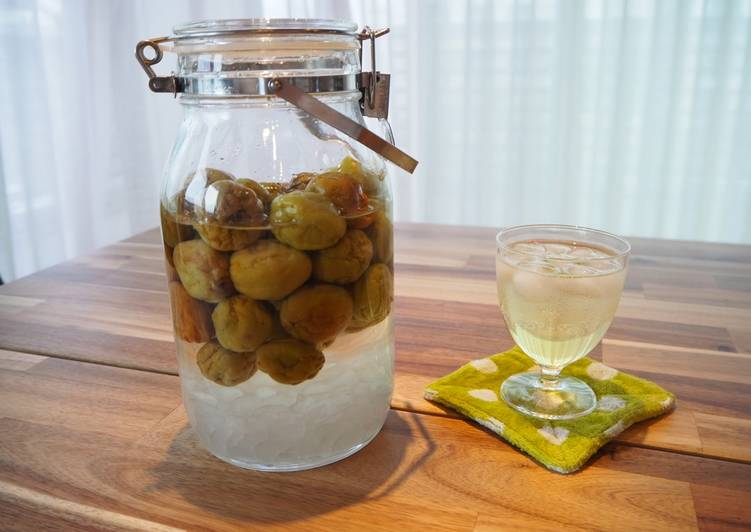Recipe of Top-Rated Ume syrup - Japanese plum syrup (plum juice base)