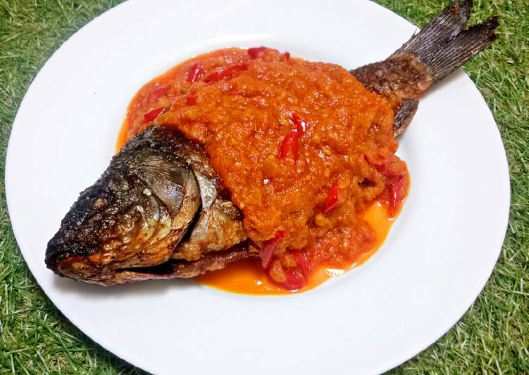 Pesmol Ikan Mas