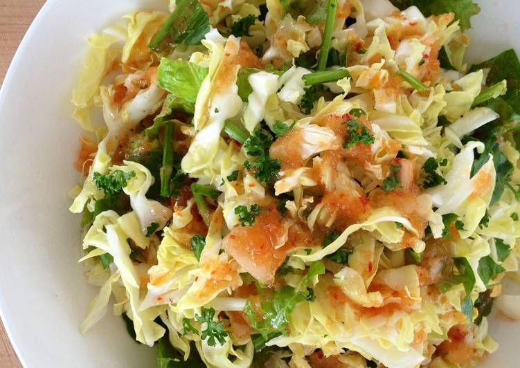 """Cabbage """"Slaw"""" with Spicy Onion Vinaigrette"""