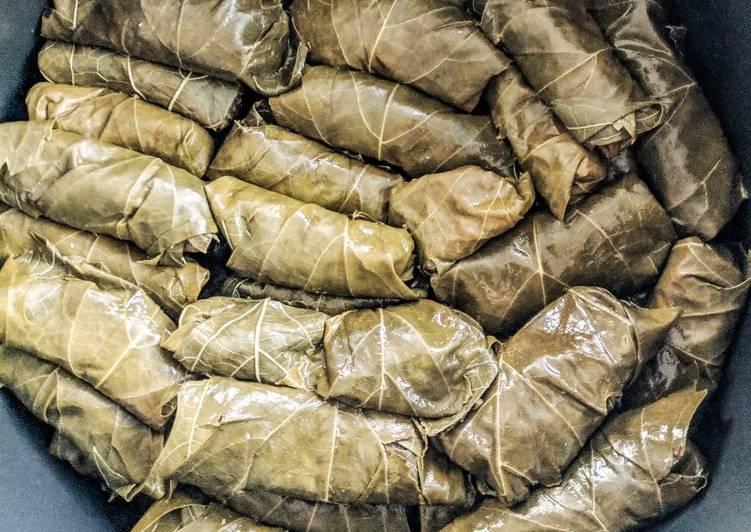 Stuffed vine leave rolls