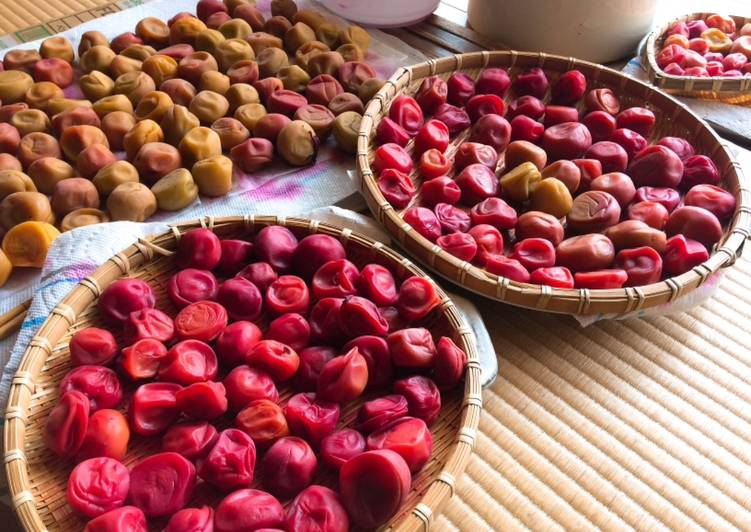 Recipe of Any-night-of-the-week Umeboshi- Japanese pickled plums / salt-preserved plums
