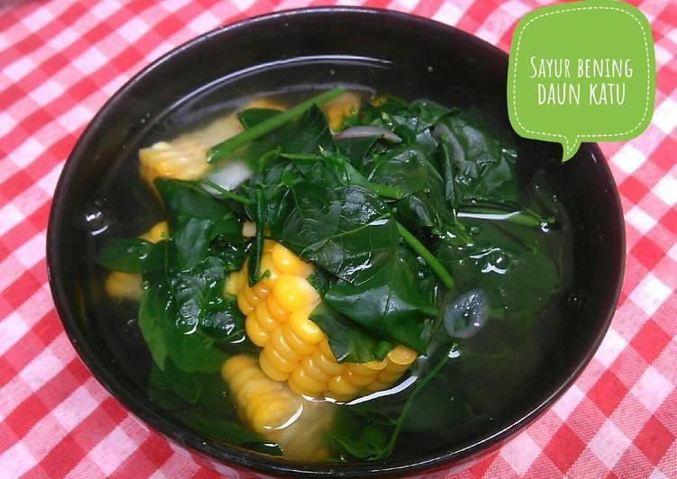 Sayur bening daun katu