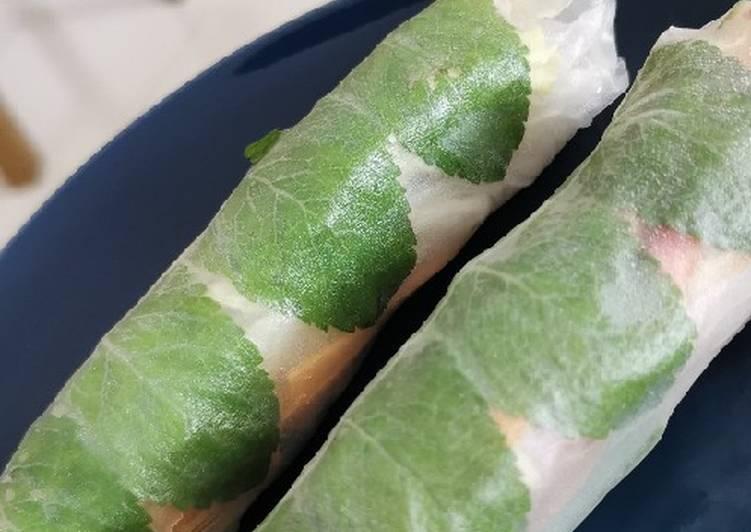 Thai Style Veggie Summer Rolls w/ Peanut Sauce