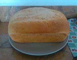 Pan Enriquecido : Pan de Molde y Pan individual