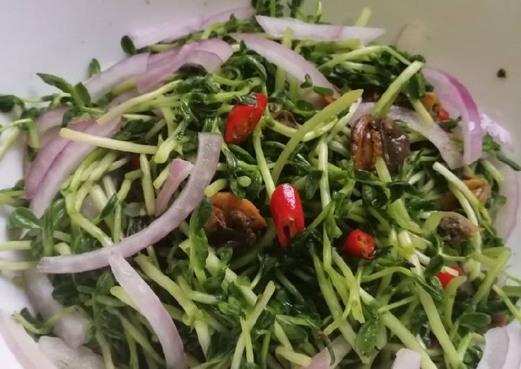 Pea sprouts kerang