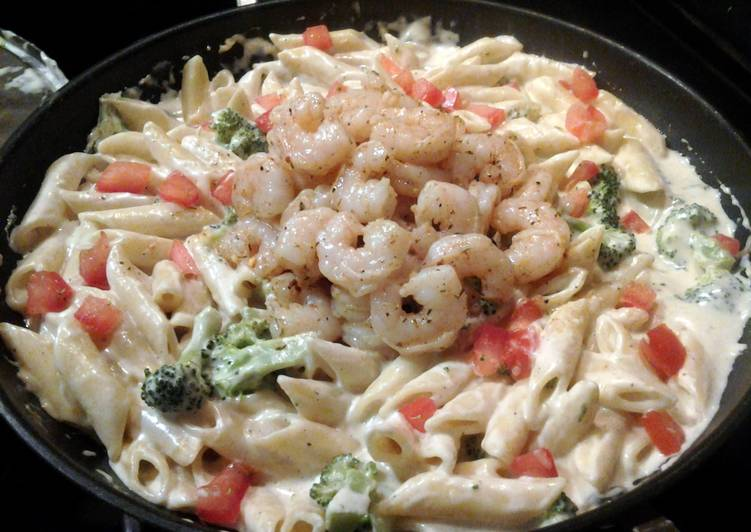 Mostaccioli Alfredo w/ caribbean shrimp