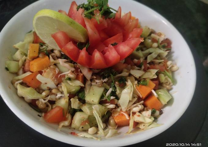 Healthy Sprout Vegetable Salad