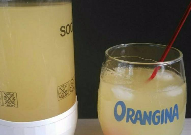 Easiest Way to Make Delicious Orangina maison healthy au thermomix ou non
