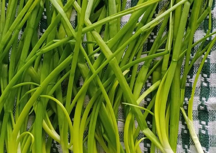 Tips:Cara menyimpan daun bawang agar kekal segar - resepipouler.com
