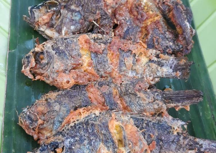 Ikan Nila Presto