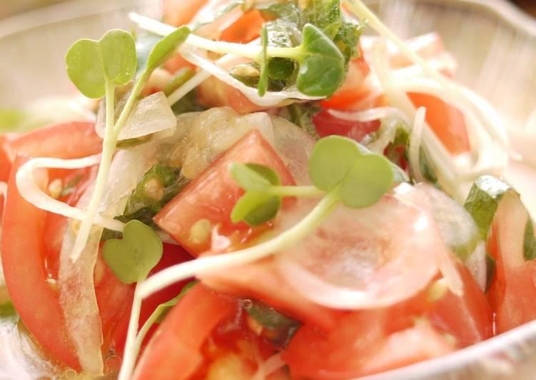Tomato and New Harvest Onion Salad