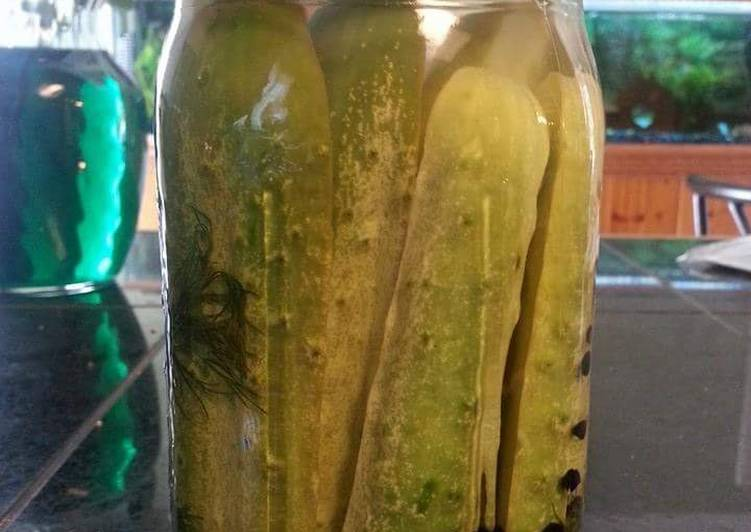 Spicy Dill Refrigerator Pickles