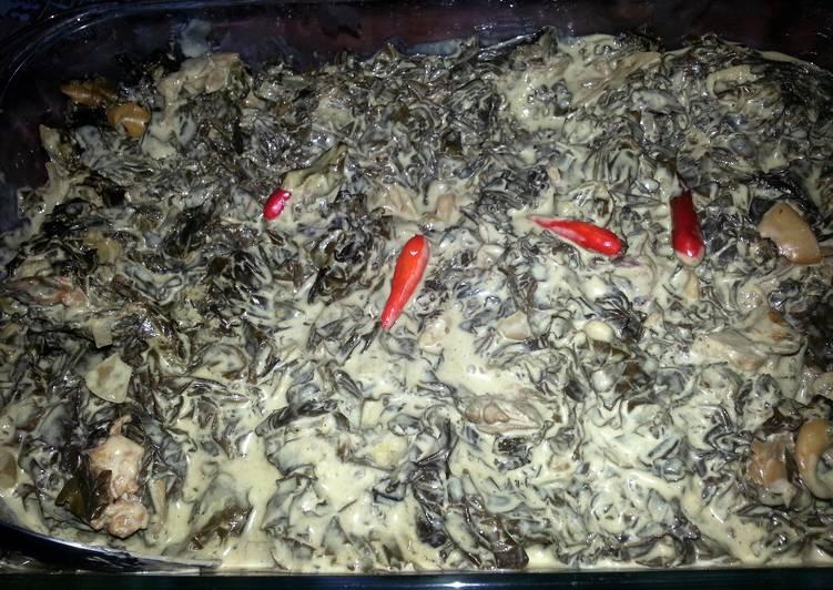 spicy tuna laing / taro leaves in coconut milk