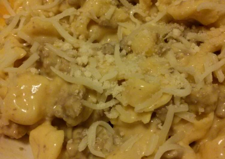 """Quick and Tasty Dinner- """"Tortell-meaty"""""""