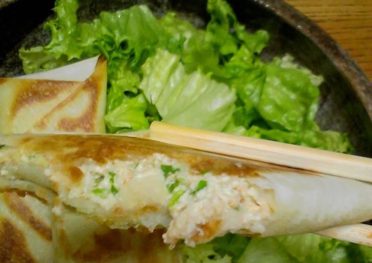 Easiest Way to Prepare Quick Falafel Tofu Spring Rolls