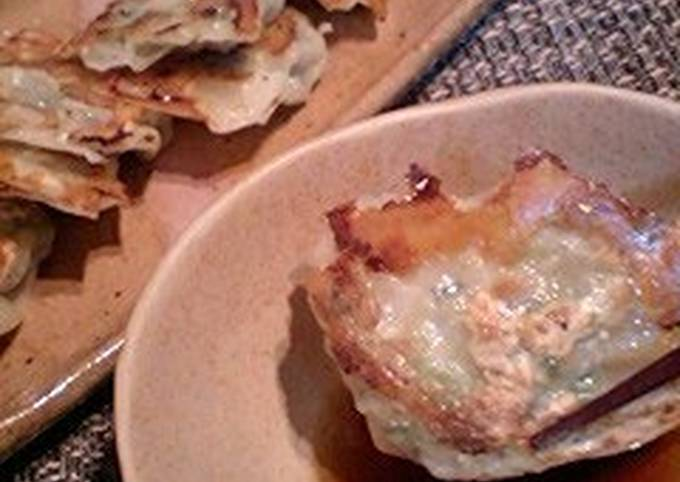 Bite-Sized Gyoza Dumplings (Tenten style)
