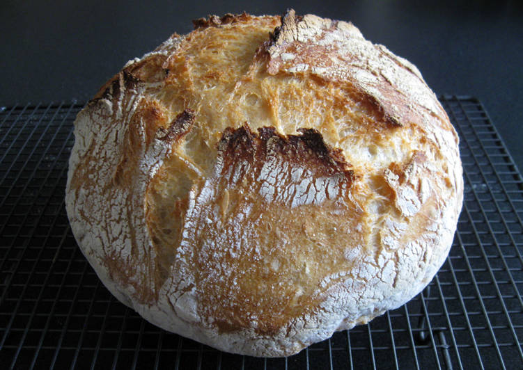 Overnight Proofing Plain Flour Rustic Bread Recipe by ...