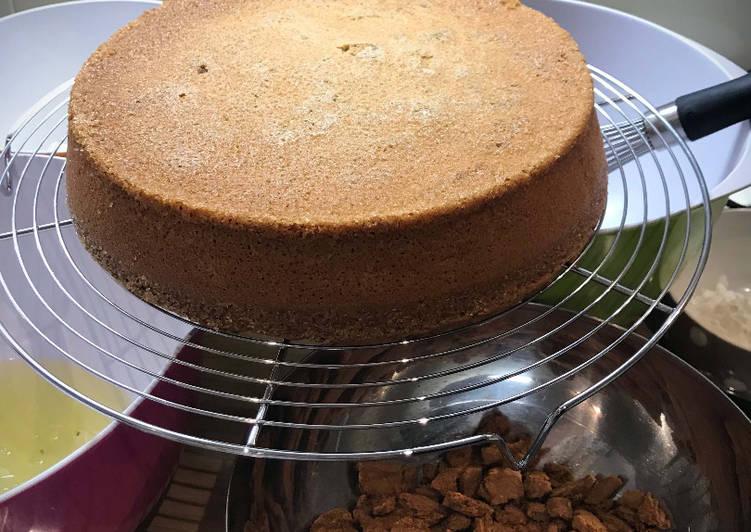 Recette Savoureux Gâteau Chocolat Blanc Spéculoos