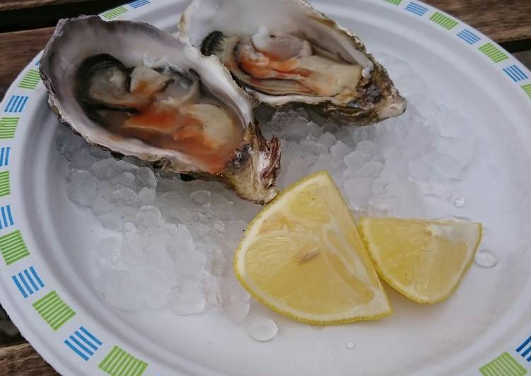 Recipe of Super Quick Homemade Fresh Oysters
