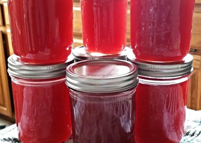 Tinklee's Raspberry Lemonade Moonshine
