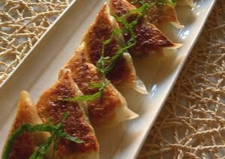 Recipe: Perfect Meat-Free But Delicious! Vegetarian Gyoza Dumplings
