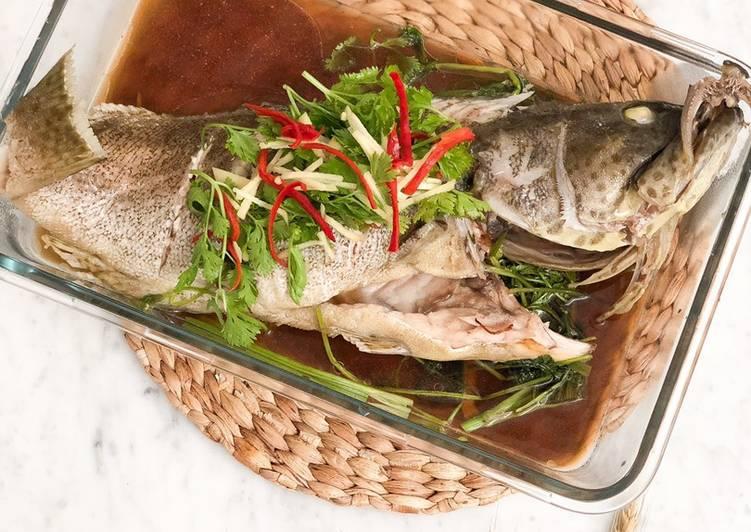 Ikan Kerapu Tim Hongkong