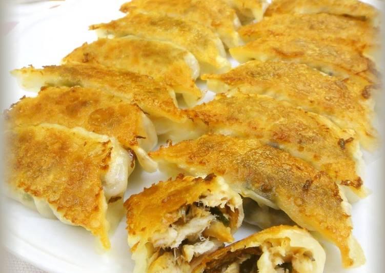 Easiest Way to Make Any-night-of-the-week Salted Mackerel and Umeboshi Gyoza Dumplings