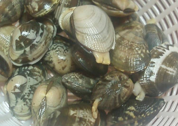 Recipe: Delicious How To Quickly Remove Sand From Manila Clams