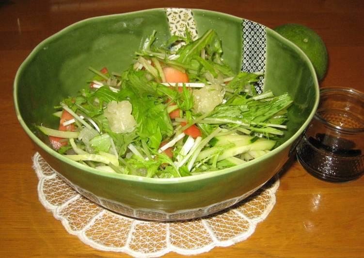 Recipe of Award-winning Mizuna Salad with Kabosu Citrus Balsamic Dressing