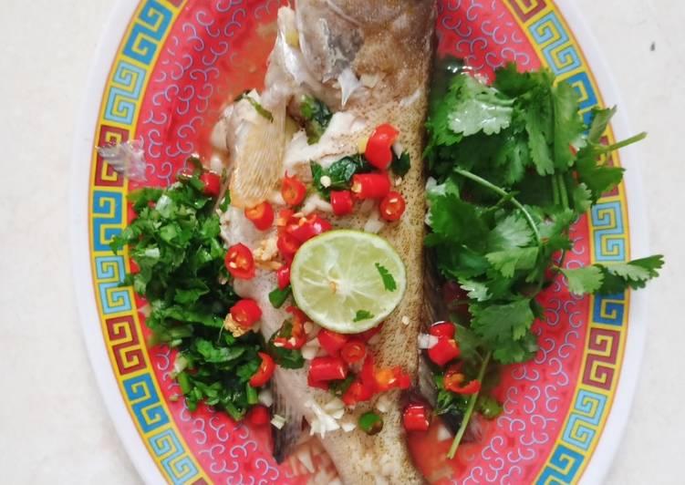 Ikan Kerapu Tim Ala Thailand