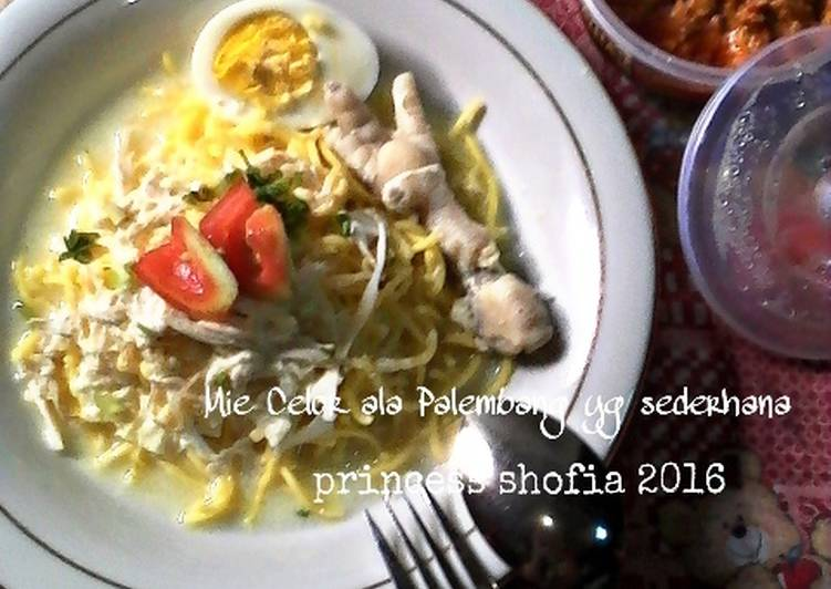 Resep Mie Celor ala Palembang yg sederhana Yang Gampang Endes