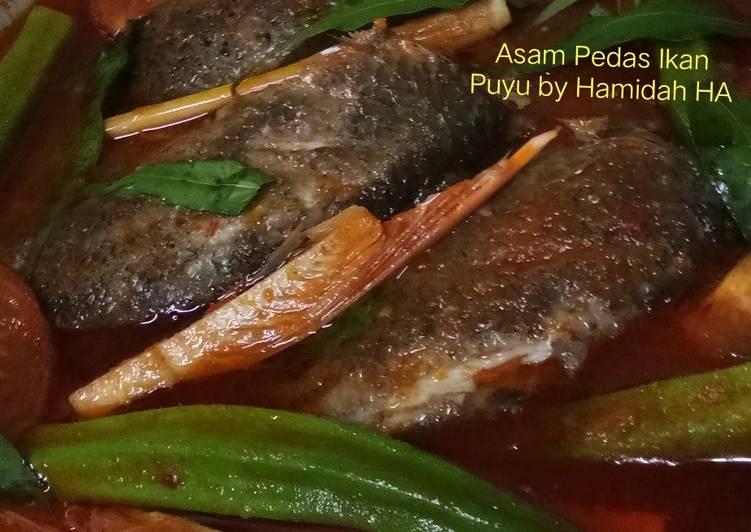 Asam Pedas Ikan Puyu #MAHN