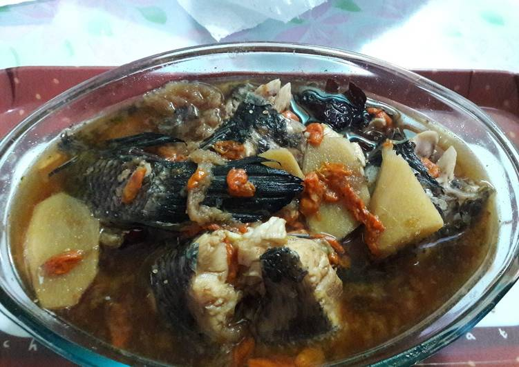 Resep Ikan Gabus Masak Obat Oleh Alinaa Aulia Cookpad