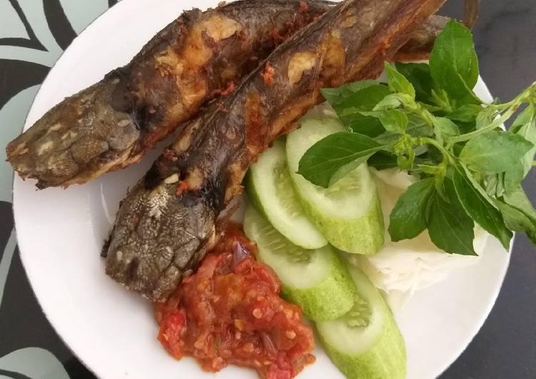 Cara Gampang Membuat Ikan Lele Goreng Bikin Ngiler Best Recipes
