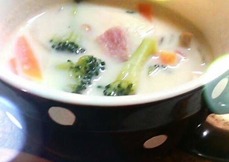 10 Best Practices for Vegetable Soup made with Soy Milk and Cheese