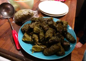 How to Cook Yummy Dolma Azerbaijan Dish