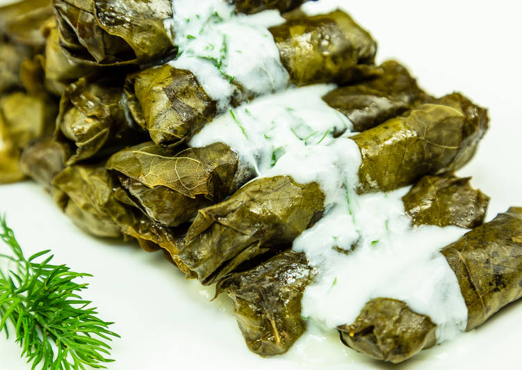 Simple Way to Make Homemade Stuffed beef in grape leaves (Armenian Dolma Recipe)