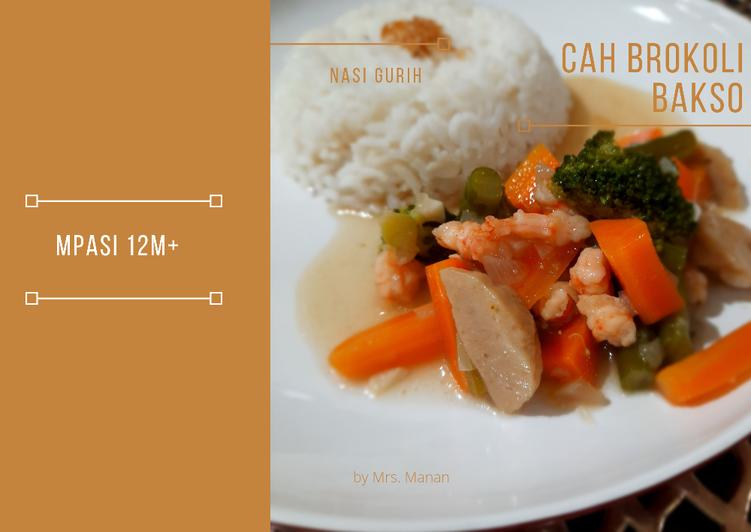 MPASI 12m+ Nasi Cah Brokoli Bakso