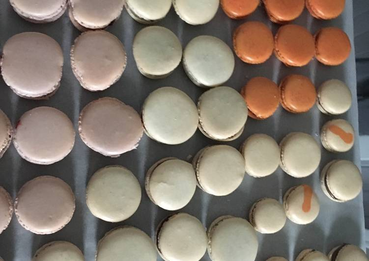 Coques de macaron